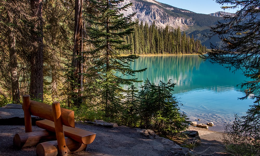 Emerald Lake Shore