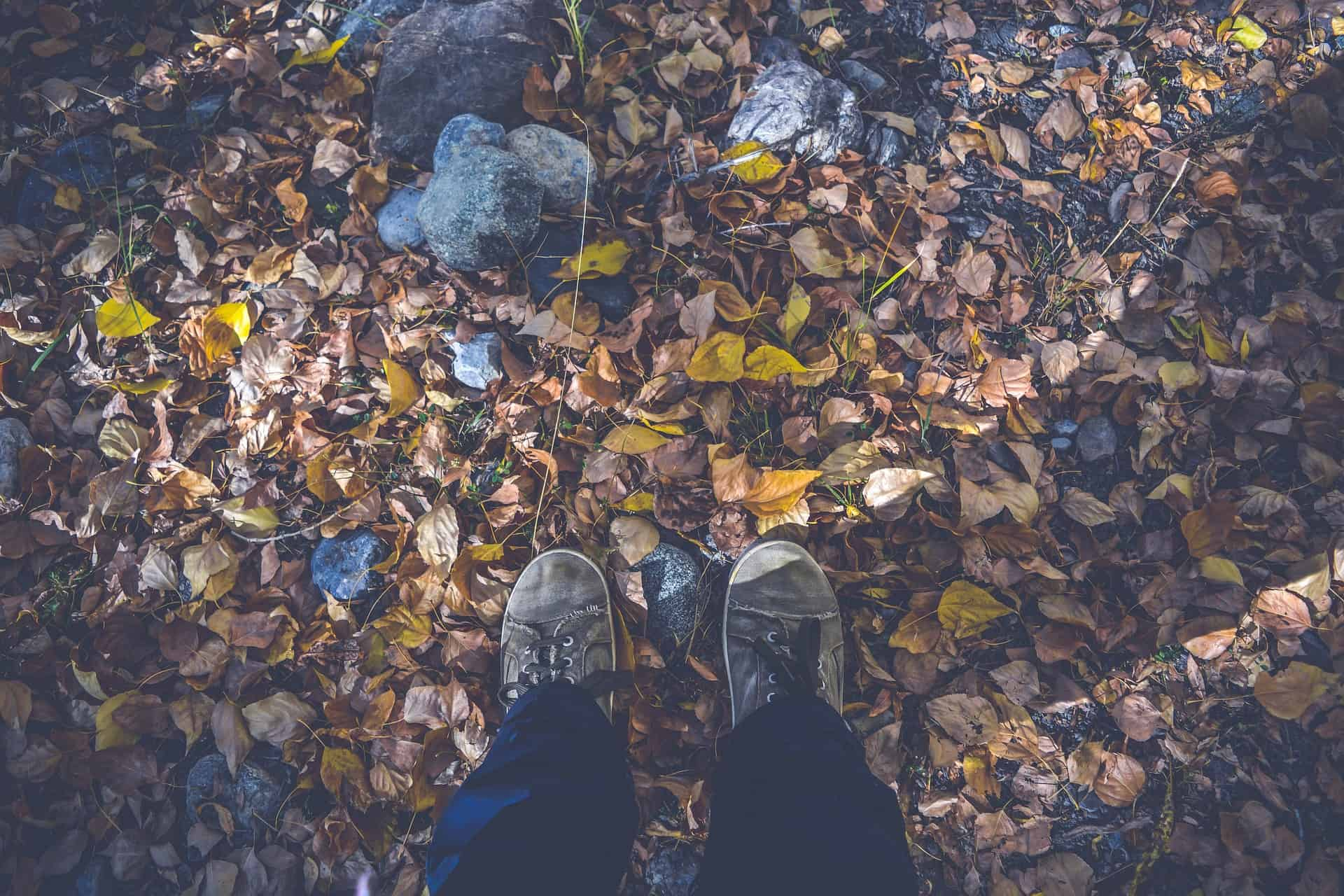 A person's feet wearing a boots and touching the dry leaves while standing in the forest